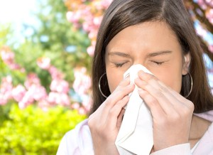 Ways To Feel Better When You Suffer From Allergies
